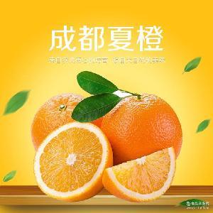 产地直销批发成都夏橙 优质新鲜橙子10kg/箱 礼盒装 成都夏橙