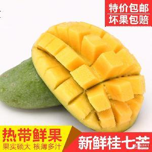 西百色桂七芒果新鲜水果桂七香芒果 一件代发 产地直供 全国包邮