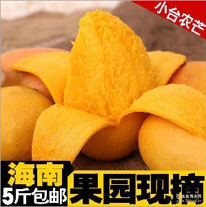 果园现摘小台农芒果皮薄肉厚核小 正宗海南芒果 味道超甜5斤起批