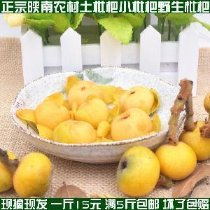 农家野生小枇杷水果5斤包邮 枇杷果新鲜水果包邮 野生土枇杷新鲜