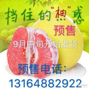 预售9月中旬开始陆续发货 福建平和正宗琯溪蜜柚红心蜜柚5斤装