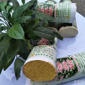 粗粮苦荞面古蔺面/低糖苦荞面二刀韭菜叶3斤