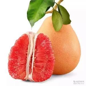 基地直销 福建红肉蜜柚 红心柚子 平和蜜柚 绿色食品 无公害水果