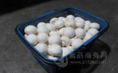 工厂化双孢菇 白菇 全年大量供应