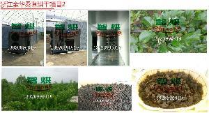 常州厂家低成本出售的智烘牌桑葚干燥设备ZH-JN-HGJ03