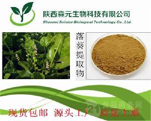 落葵提取物10:1 木耳菜提取物 纯天然植物提取 厂家专业供应