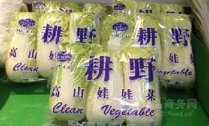 食用菌包装膜 金针茹包装膜 蟹味茹包装膜 白玉茹包装膜 opp膜