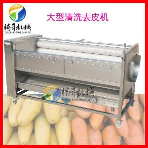 厂家直销大型萝卜去皮机 快速土豆/芋头去皮脱皮机 价格优惠