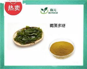 褐藻多糖50% 硫酸酯 海带提取物 包邮