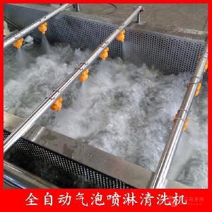 黄桃罐头加工清洗设备 气泡喷淋清洗机长度配置 可根据产品特性