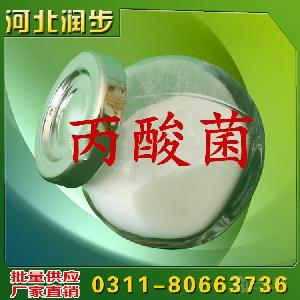 丙酸菌出厂价