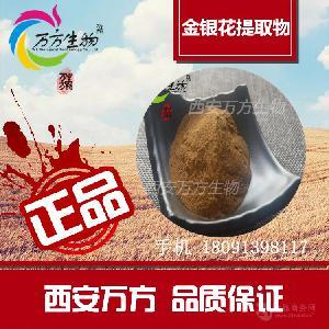 西安万方生物厂家供应 金银花提取物 绿原酸10%