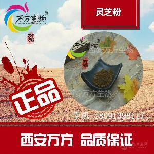 灵芝粉 专业萃取  西安万方生物厂家生产