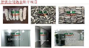 高温热泵海参干燥房设备多少钱一台