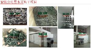 智烘木耳高温热泵烘干房农产品烘干机ZH-JN-HGJ03