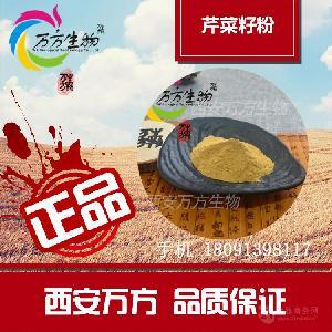 芹菜籽粉 食品级原料 厂家生产