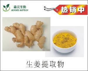 天然姜黄皂素95% 生姜提取物 生姜粉 现货包邮