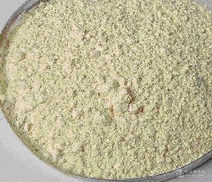 厂家直销大豆蛋白改性酶