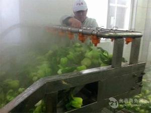 马铃薯漂烫线 杀青线厂家