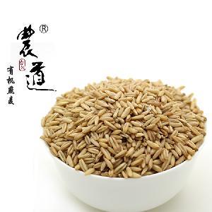 农道 有机燕麦 内蒙古武川裸燕麦 厂家直销 长期稳定供货