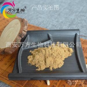 桉树叶提取物   20:1   桉树叶粉的价格
