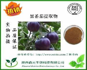 黑番茄果粉 99% 番茄冻干粉 黑番茄提取物 厂家现货1公斤包邮寄
