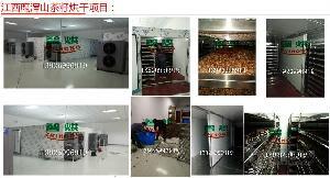 智烘山茶籽高温空气能热泵烘干机厂价直销
