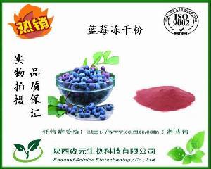 蓝莓冻干粉 99.99% 冷冻干燥 食品级冻干蓝莓粉 厂家1kg包邮
