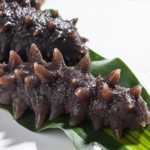 大连新鲜海参价格多少1斤野生刺参的做法