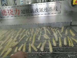 液氮隧道式速冻机 平板速冻设备 速冻西蓝花 蔬菜丁冷冻设备