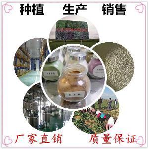 羊角透骨草提取物10:1羊角透骨草速溶粉/浸膏浓缩粉优质原料