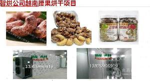 智烘牌越南腰果烘房设备厂ZH-JN-HGJ03坚果烘干机