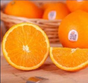 新鲜农产品宏鸿一站式食材食堂配送-杨氏橙