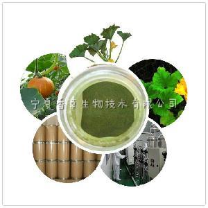 宁夏香草生物南瓜叶粉  vc含量 南瓜叶速溶粉 厂家南瓜叶纯粉