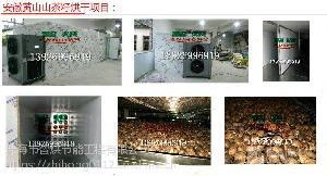 能耗低智烘牌茶籽干燥系统ZH-JN-HGJ03大型自动化高