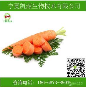 胡萝卜粉 胡萝卜提取物厂家批发