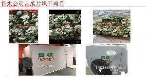 智烘牌农产品烘干机批发价格苦瓜片干燥设备ZH-JN-HGJ03