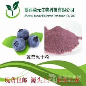 蓝莓冻干粉 冻干蓝莓粉 99% 蓝莓粉 工厂现货热销 1kg包邮寄