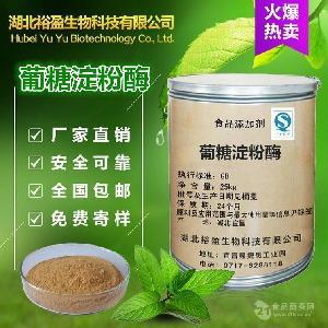 供应直销 食品级葡糖淀粉酶 高酶活力 葡糖淀粉酶 品质保证