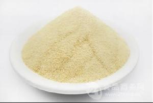 耐盐型九州娱乐官网级黄原胶