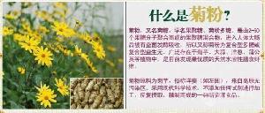菊苣提取物