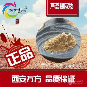 芦荟提取物 40% 品质保证 现货包邮