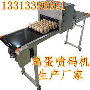 鸡蛋喷码机生产厂家小型喷码机价格