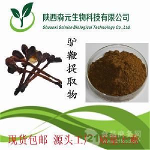 驴鞭提取物 99% 驴鞭粉 驴肾粉 厂家专业供应 多种提取规格