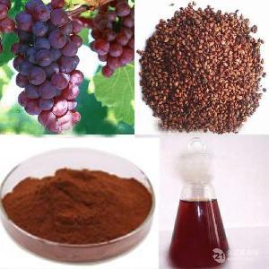 红葡萄提取物