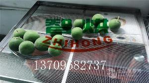干燥品质高智烘热泵化橘红烘干设备ZH-JN-HGJ03