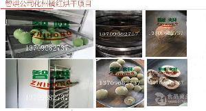 小能耗的智烘化橘红烘房ZH-JN-HGJ03高温热泵技术
