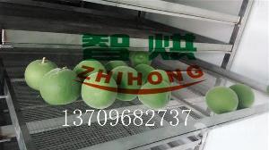 空气能热泵智烘化橘红烘干房ZH-JN-HGJ03便宜好用