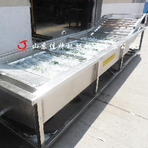 辽宁豆芽清洗机 全自动蔬菜清洗机