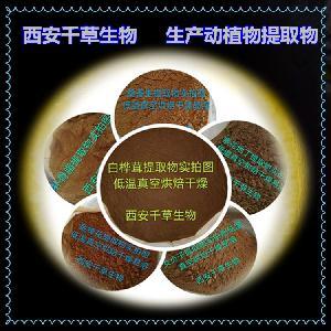 粉葛提取物水溶粉 厂家生产天然提取物定做浓缩纯浸膏